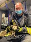 Ein Feuerwehrmann hält die Eule sicher in seiner Hand und übergibt sie dann an die Tierrettung