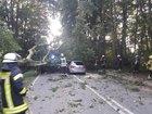 Baum auf fahrendes Auto gestürzt. Foto: Feuerwehr Kleve