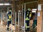 Feuerwehr Kirchhundem, Bettinghof, Pferde, Gruppenüben mal anders.  Quelle: Feuerwehr