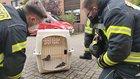 Nach der Rettung (Foto: Feuerwehr Celle)