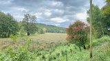 thumbnail - Pirschbachtal im Herbst