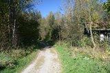 thumbnail - Farbinger Waldlauf Joggingrunde