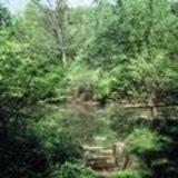 thumbnail - Teich im Weißwassertal