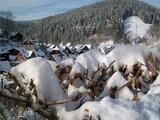 thumbnail - Wildemann im Winter Foto: Peter Weiss