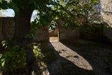 thumbnail - Burg Plesse