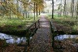thumbnail - Wanderweg Tiergarten