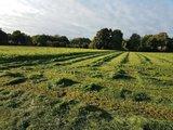thumbnail - Landschaft der Samtgemeinde Uelsen