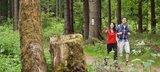 thumbnail - Wanderer unterwegs auf dem Rennsteig