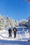 thumbnail - Skifahrer in der Loipe