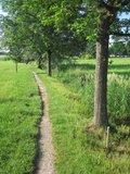 thumbnail - Naturlehrpfad am Schwarzbachmoos