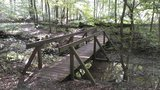 thumbnail - Brücke Weg der Selbstzuwendung
