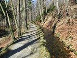 thumbnail - Trail an der Radau