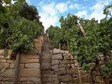 thumbnail - Natursteinmauern säumen den Wanderweg
