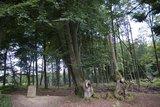 thumbnail - Grenzstein Aachener Wald