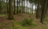 thumbnail - Schleifenroute - Keltische Viereckschanze bei Möckenlohe