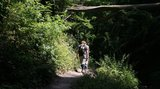 thumbnail - Wanderer auf einem Wanderpfad in der Ehrbachklamm