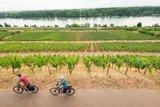 thumbnail - Radfahren am Roten Hang mit Blick auf den Rhein