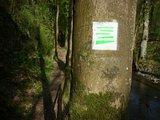 thumbnail - Pfadabschnitt im Baybachtal