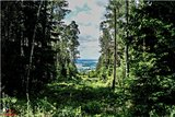 thumbnail - Blick vom Hirschenstein auf das Kirchberger Granitgebiet