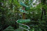 thumbnail - Wegweiser im Stadtwald Bad Schmiedeberg