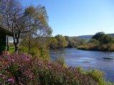 thumbnail - In den Donauauen