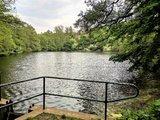 thumbnail - Ritzebühler Teich