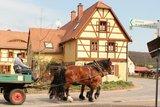 thumbnail - Landidylle in Klosterbuch