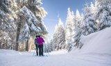 thumbnail - Auf dem Skiwanderweg Rennsteig