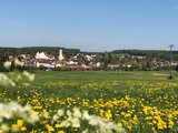 thumbnail - Aussicht auf Aulendorf mit Schloss und Kirche