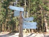 thumbnail - Startpunkt am Friesenheiligen