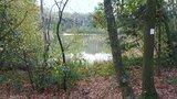 thumbnail - Blick auf den Teich