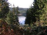 thumbnail - Blick vom Gerstenberg auf die Talsperre Eibenstock