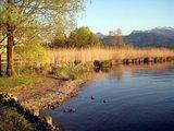 thumbnail - Chiemseeblick bei Bernau/Felden