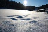 thumbnail - Winter Hilbringse
