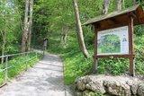 thumbnail - Beginn Kellerbergweg/Waldlehrpfad
