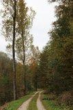 thumbnail - Weg von Grindelteich - Blasenberg