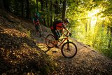 thumbnail - Mountainbiker auf Spitzkehrentrail