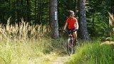 thumbnail - Trail am Bödner Teich