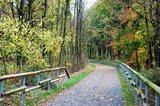 thumbnail - Balkantrasse in Burscheid im Herbst