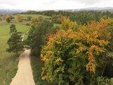 thumbnail - Herbstwald von der Himmelsleiter aus