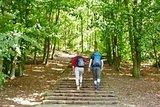 thumbnail - Treppe zur Schönen Aussicht