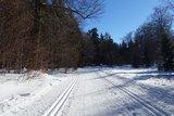 thumbnail - Loipen und Winterwanderweg auf dem Gelben Weg