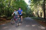 thumbnail - Die Tour führt auch durch den idyllischen Bienwald