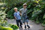 thumbnail - Zwei Jungs am Bacherlebnispfad