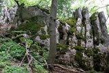 thumbnail - Naturschutzgebiet Klamm im Altmühltal bei Riedenburg