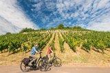 thumbnail - Radeln an Deutschlands berühmter Rieslingweinlage - dem Roten Hang