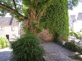 thumbnail - Naturdenkmal am Bieketurm in Attendorn