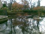 thumbnail - Der Teich am Eingang des Adenauerparks.