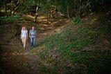 thumbnail - Wanderweg durch den Wald