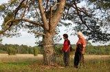 thumbnail - Durch die Hardheimer Wacholderheiden – Unterwegs in einem sagenhaften Naturschutzgebiet